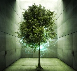 eternal-life-tree